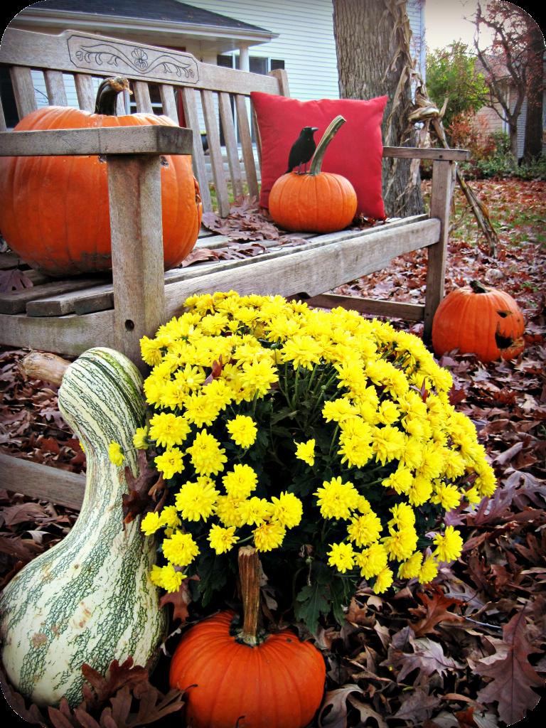 Backyard Halloween Party Ideas